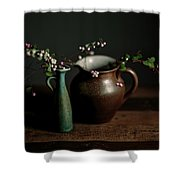 Still Life With Stoneware  Shower Curtain