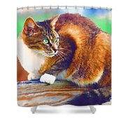 Still On The Fence Shower Curtain
