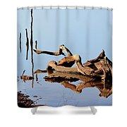 Still Water Shower Curtain