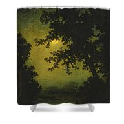 Stilly Night Shower Curtain