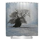 Stilton Silhouette Shower Curtain by Leah  Tomaino