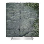 Stingray Camo Shower Curtain
