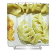 Stock Image For Momo Vegetable Dish India Shower Curtain