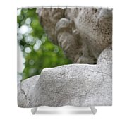 Stone 2 Shower Curtain