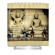 Stone And Flowers - Buddhist Shrine Shower Curtain