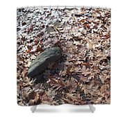 Stone And Leaves Shower Curtain