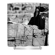 Stone Architecture Shower Curtain