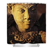 Stone Carving Shower Curtain