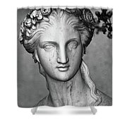 Stone Cold Beauty Shower Curtain