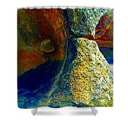 Stone Stare Shower Curtain
