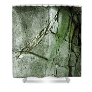 Stone/crack Shower Curtain