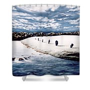 Stone Delusion Shower Curtain