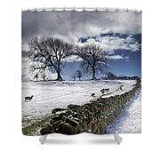 Stone Fence, Weardale, County Durham Shower Curtain