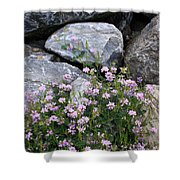 Stone Flowers Pink Shower Curtain