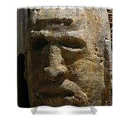 Stone Head Shower Curtain