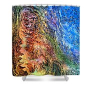Stone Man By Rafi Talby Shower Curtain