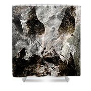 Stone Mask Shower Curtain