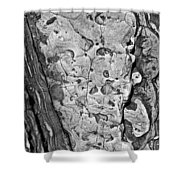 Stone Patterns Rock Map Shower Curtain