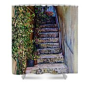 Stone Steps Shower Curtain