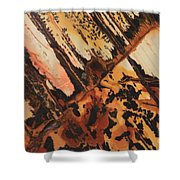 Stone Vision I-b Shower Curtain