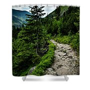 Stone Walkway Into The Valley Shower Curtain