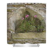 Stone Wall Determination Shower Curtain