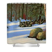 Stone Wall Gateway Shower Curtain