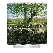 Stone Wall In Rhode Island Shower Curtain