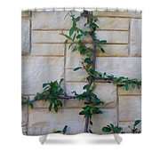 Stone Wall Vine Shower Curtain