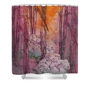 Stones Cry Out Shower Curtain