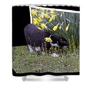 Stop And Feel The Flowers Shower Curtain