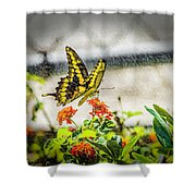 Stopping For Lunch Shower Curtain