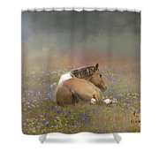 Stopping To Smell The Flowers Shower Curtain
