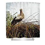 Stork Nest Shower Curtain
