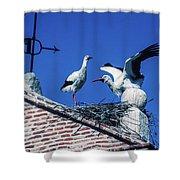 Storks Of Segovia Shower Curtain