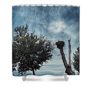 Storks Shower Curtain