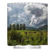 Storm And Cattle Shower Curtain