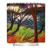 Storm Approaching Fast Shower Curtain