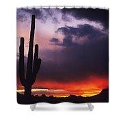 Storm Clouds Pass Over A Saguaro Catus Shower Curtain