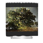 Storm Force Shower Curtain