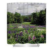 Storm In The Lupine Shower Curtain