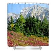 Storm Mountain Shower Curtain
