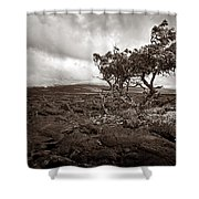 Storm Moving In - Sepia Shower Curtain