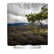 Storm Moving In Shower Curtain