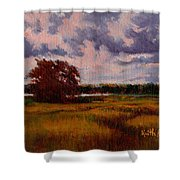 Storm Over Marshes Shower Curtain