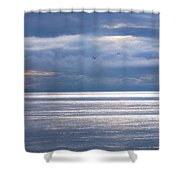 Storm Supremacy Shower Curtain