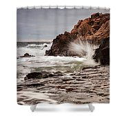 Stormy Beach Waves Shower Curtain