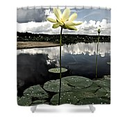 Stormy Lotus Shower Curtain