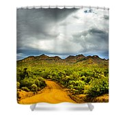 Stormy Road Home Shower Curtain