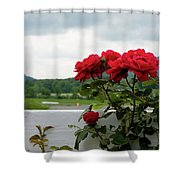 Stormy Roses Shower Curtain by Valeria Donaldson